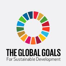 Youth International Development Summit