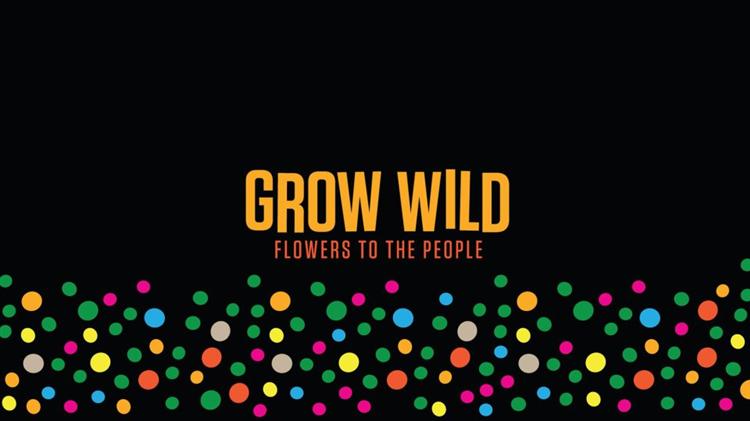 Cyllid Grow Wild