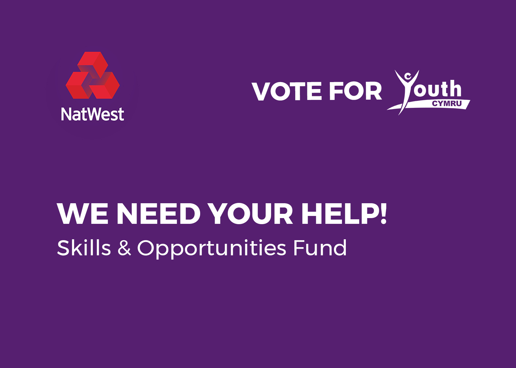 NatWest: Skills & Opportunities Fund